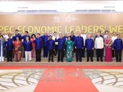 La 25e conférence des dirigeants économiques de l'APEC à Da Nang