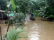 Aides étrangères pour le Vietnam à remédier aux conséquences du typhon Damrey