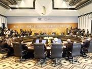 APEC 2017 : Jakarta Post apprécie le statut du Vietnam