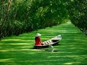 Plus de 700 milliards de dongs pour la zone touristique de Tra Su de la province d'An Giang