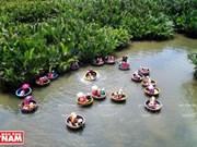 Cam Thanh, le pays des cocotiers d'eau