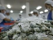 Exportations nationales de crevettes vers l'UE : une forte croissance prévue en 2018