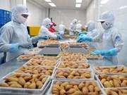 2017: bond des exportations de marchandises d'Hô Chi Minh-Ville