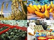 Produits agricoles, sylvicoles et aquatiques : 38 milliards de dollars d'exportation visés en 2018