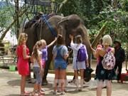 Dak Lak développe le tourisme communautaire