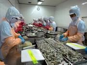 Plan d'action national sur le développement du secteur de la crevette