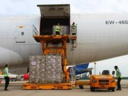 Aide biélorusse pour le Vietnam dans le traitement des conséquences de la tempête Damrey
