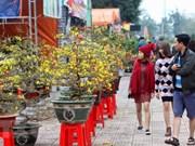 Des étrangers enthousiastes de vivre le Têt au Vietnam
