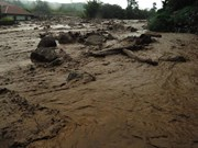 Indonésie : au moins 20 morts et disparus dans un glissement de terrain