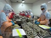 Une délégation australienne vérifie la chaîne de production de crevettes du Vietnam