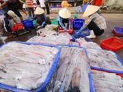 Le Vietnam, 2ème exportateur de céphalopodes au Japon