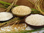 Janvier/février: la Chine, premier marché à l'export du riz vietnamien