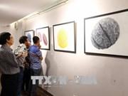 Quatorze peintres européens exposent à Da Nang