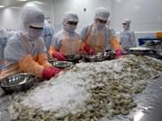 L'industrie de la crevette sous la pression irrésistible de l'offre
