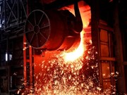 Forte augmentation des exportations d'acier de Hoa Phat vers l'Australie