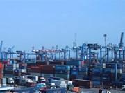 Forte croissance des exportations nationales de noix de cajou