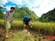 Politiques de visa touristique de Dà Nang