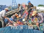 """La CE fait le bilan des avancées vietnamiennes suite au """"carton jaune"""" concernant la pêche illégale"""