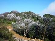 Cao Bang : Création du parc national Phia Oac-Phia Den