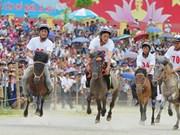 Rendez-vous en juin sur le plateau de Bac Ha (Lao Cai)