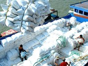 Hausse de 40% des exportations nationales de riz  en cinq mois
