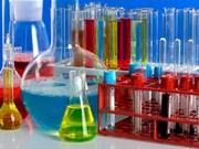 Industrie chimique: des entreprises indiennes cherchent des opportunités à HCM-Ville