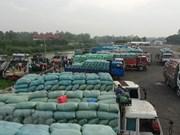 Les exportations de produits agricoles via la porte frontalière internationale de Lao Cai en hausse