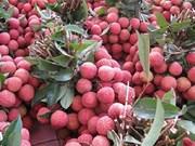 Accélérer l'exportation des fruits vietnamiens vers le marché chinois
