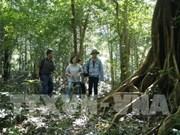 La province de Kon Tum utilise la technologie pour prévenir les feux de forêt