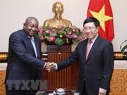 Le vice-Premier ministre Pham Binh Minh reçoit le nouvel ambassadeur mozambicain
