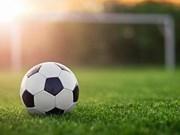 Ouverture d'un tournoi de football des Vietnamiens en Russie