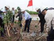 Mieux gérer les zones humides pour la prévention des catastrophes