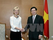 Le vice-PM et ministre des AE Pham Binh Minh reçoit la gouverneure d'Ostergotland (Suède)