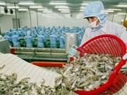 Crevette : l'Australie voit rouge à cause des tâches blanches