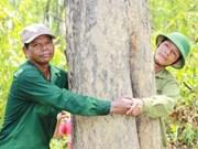 """Gardiens bénévoles d'une """"forêt parfumée"""" et fiers de l'être"""