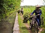 La BAD aide l'Indonésie à atteindre la sécurité alimentaire