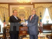 Le vice-PM permanent Truong Hoa Binh en visite officielle en Malaisie