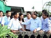 Le PM Nguyên Xuân Phuc exhorte à multiplier les jardins modèles