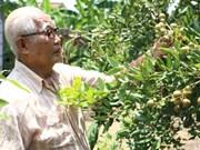 Les Hoa œuvrent pour le développement de Bac Liêu