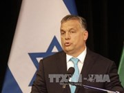 Vietnam et Hongrie cherchent à renforcer la coopération multiforme