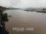 Crues: 12 personnes mortes à Thanh Hoa et Son La