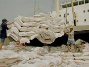 2017, une bonne année pour les exportations nationales de riz