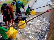 Vietnam-Algérie : accélération de coopération dans la pêche et l'aquaculture