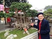 Découvrez l'art du bonsaï dans l'ancien village de Triêu Khuc