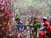 Le Vietnam se prépare à célébrer le Têt du Chien