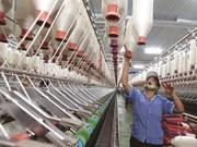 Le secteur textile vietnamien tisse l'avenir à l'ère 4.0