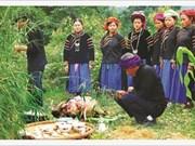 À Hà Giang, les Pu Péo célèbrent le génie de la forêt