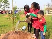 Plantation de 500 cerisiers japonais dans un parc de Hanoi