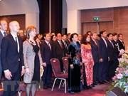 Célébration du 45ème anniversaire des relations diplomatiques Vietnam-Pays-Bas