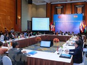 Réunion de hauts officiels de l'ASEAN-Inde à Hanoi